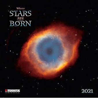 WHERE STARS ARE BORN 2021