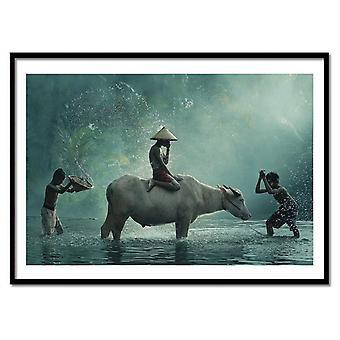 Art-Poster - Waterbuffels - Vichaya 50 x 70 cm