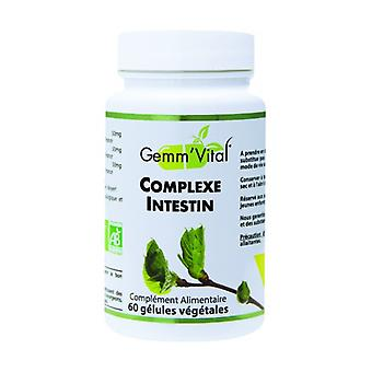 Bio Intake Complex - Gemmotherapy 60 vegetable capsules