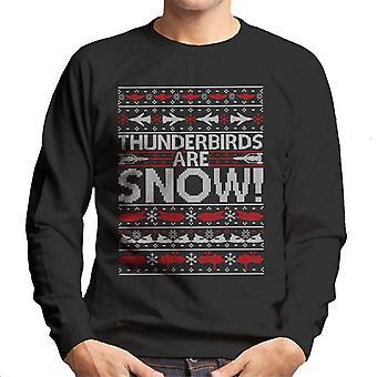 Thunderbirds Are Snow Knit Pattern Uomo's Sweatshirt
