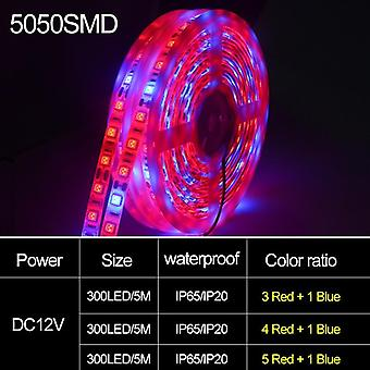 Phyto Lamps Full Spectrum Led Strip Light For Greenhouse Hydroponic Plant