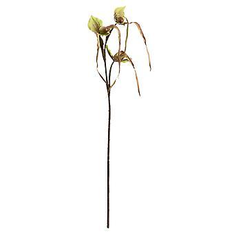 Hill Interiors Venus Slipper Artificial Flower