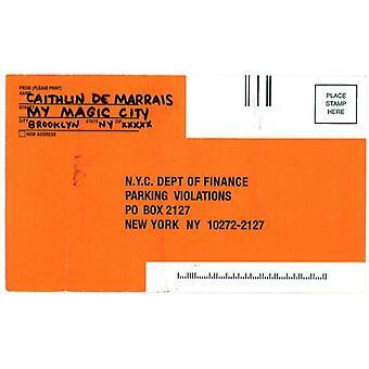 De Marrais,Caithlin - My Magic City [Vinyl] USA import