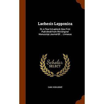 Carl Von Linne tarafından lachesis Lapponica