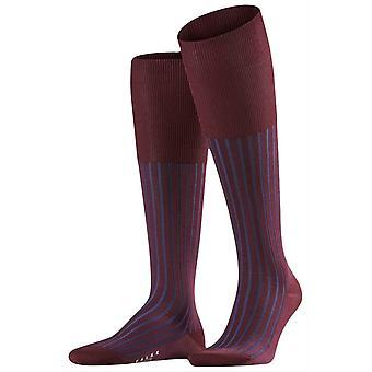 Falke ombre haute de genou chaussettes - Barolo rouge/marine