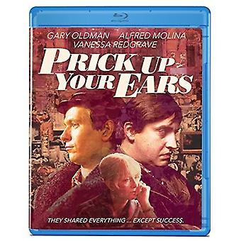 Sticka upp dina öron [Blu-ray] USA import