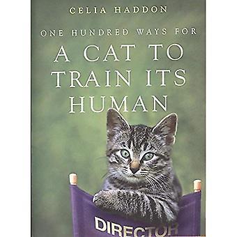 En hundra sätt för en katt att träna sin mänskliga