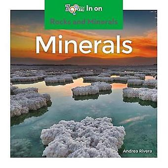 Minerals by Andrea Rivera - 9781532120459 Book