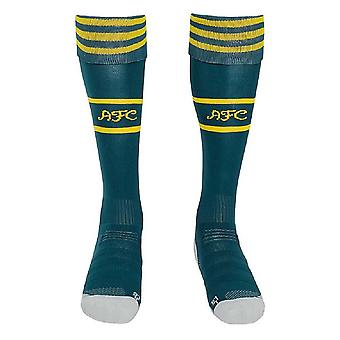 2019-2020 Arsenal Adidas Home Goalkeeper Socks (Green)