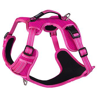 Rogz Arnes Explore (Dogs , Collars, Leads and Harnesses , Harnesses)