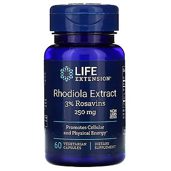 Life Extension, Rhodiola Extract, 250 mg, 60 Vegetarian Capsules