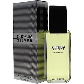 Antonio Puig Quorum Silver Eau de Toilette Spray for Men 100 ml