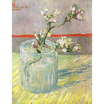 Blossoming Almond Branch in a Glass, Vincent Van Gogh, 24x19cm