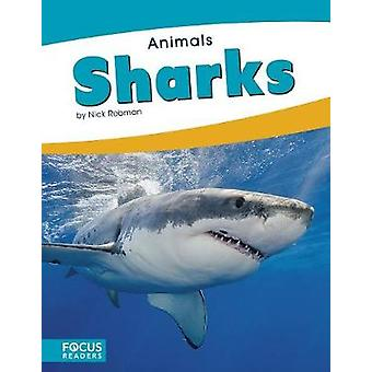 Animals - Sharks by Animals - Sharks - 9781635179552 Book