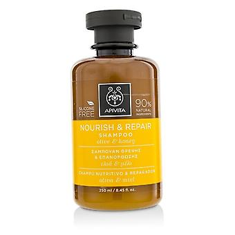 Apivita Nourish & Repair Shampoo with Olive & Honey (For Dry-Damaged Hair) 250ml/8.45oz