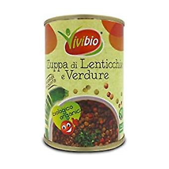 Lentil and vegetable soup 400 g