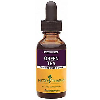 Herb Pharm Green Tea Glycerite, 4 oz