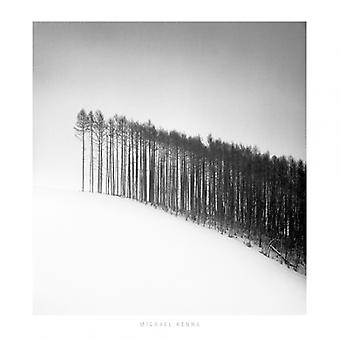 Forest Edge Hokuto Japan 2004 Poster Print by Michael Kenna (12 x 12)