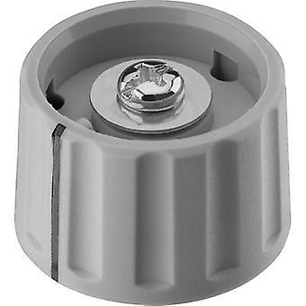 Ritel 27 28 60 1 Control knob Grey (Ø x H) 28 mm x 18.2 mm 1 pc(s)
