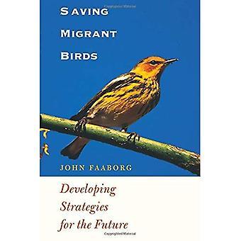 Aves migrantes salvífica: Desenvolvimento de estratégias para o futuro