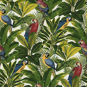 Exotic Bird Parrot Tropical Leaves Wallpaper Floral Red Blue Yellow Green Ideco