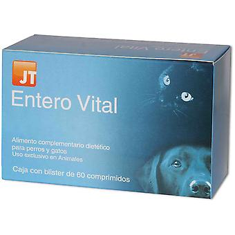 JTPharma Dietary Supplement For Dogs And Cats Enterovital 60 Tablets