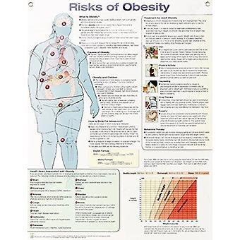 Risks of Obesity Anatomical Chart Laminated by Anatomical Chart Company
