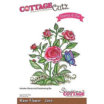 Scrapping Cottage CottageCutz Rose Flower - June