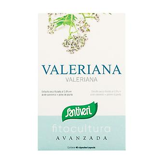 Valerian phytoculture kapsler 40 kapsler