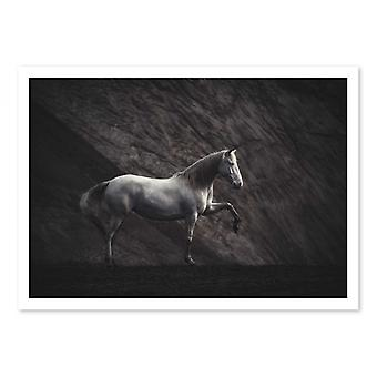 Art-Poster - Solitaire Horse - Heike Willers