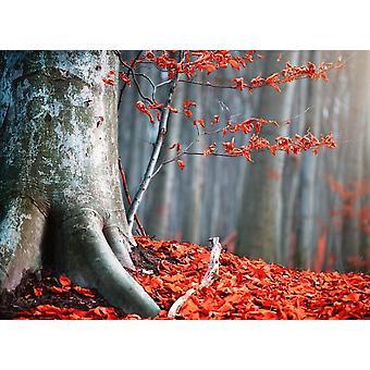 Tapet väggmålning gamla höst träd