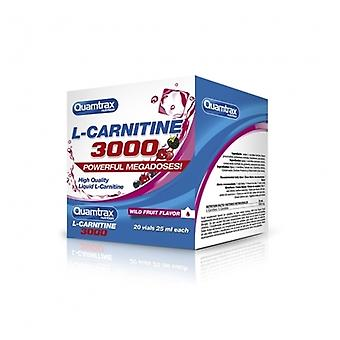 Quamtrax Nutrition L Carnitina 3000 20 Viales x 25 ml