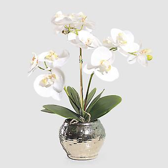 Simulazione Vaso da fiori Pianta Frase Isolato Farfalla Orchidy Arte Decorazione Pacchetto Decorazione Casa Soggiorno Soggiorno Ingresso Tavolino Fl