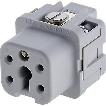 Amphénol C146 10B004 002 4-1 Socket Insert Connecteurs lourds Tuchel