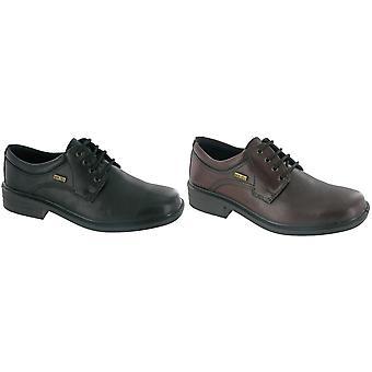 Cotswold Sudeley Mezczyzni wodoodporne buty / buty męskie