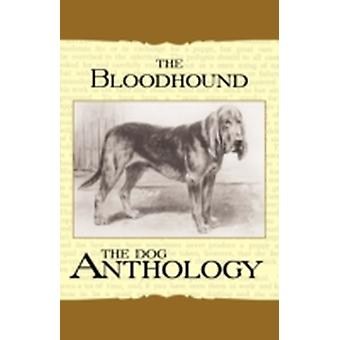 The Bloodhound  A Dog Anthology A Vintage Dog Books Breed Classic by Various