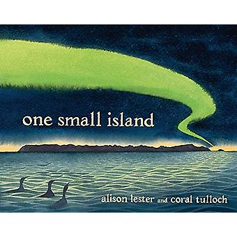 One Small Island by Alison Lester - 9780143789253 Book