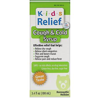 Homeolab USA, Kids Relief, Cough & Cold Syrup, For Kids 0-12 Yrs, 3.4 fl oz (100