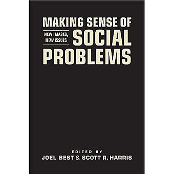 Making Sense of sociale problemen
