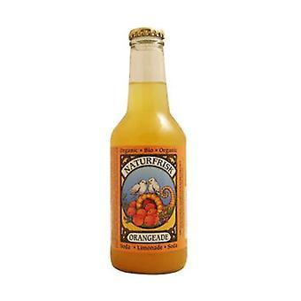 Organic Orange Soda 250 ml