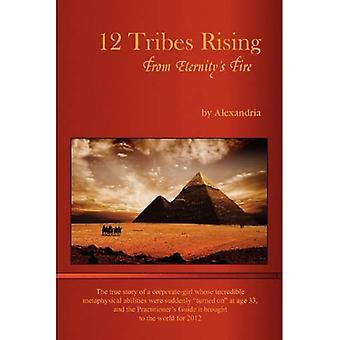 12 Tribes Rising From Eternity's Fire