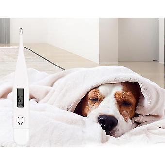 Led digitális hőmérő a háziállatok-humanizált design
