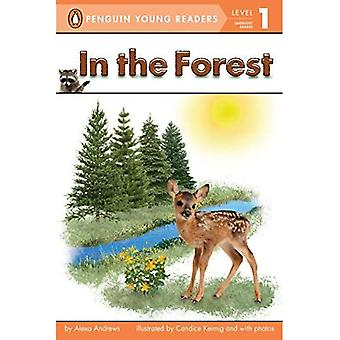 In the Forest (Penguin Young Readers: Level 1)