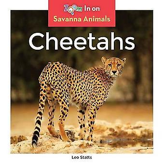 Cheetahs by Leo Statts - 9781680791990 Book