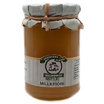 Miele Millefiori-1000 Bloemenhoning uit het zuiden van Italië