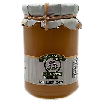 Miele Millefiori - 1000 fleurs de miel du sud de l'Italie