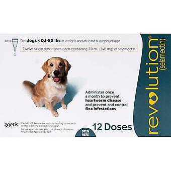 Revolution for Dogs 44-88 lbs (20-40kg) - 12 Pack