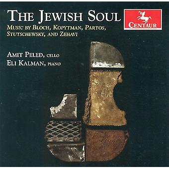 Jewish Soul - The Jewish Soul [CD] USA import