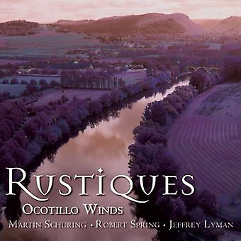 Robert Spring & the Ocotillo Winds - Rustiques [CD] USA import