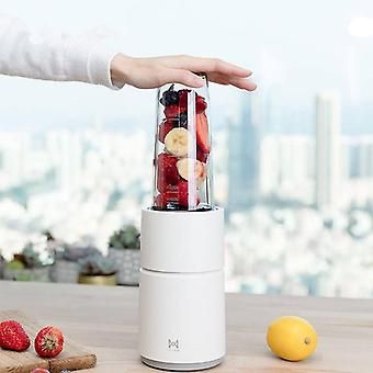 Mini Electric Fruit Juicer